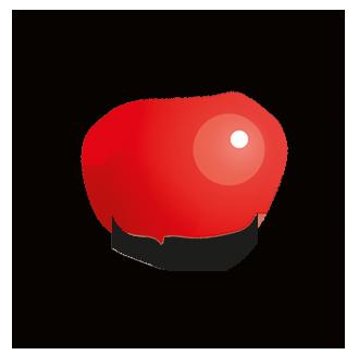 janseh-logo